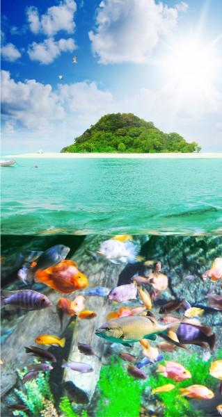 Unterwasserwelt mit Insel