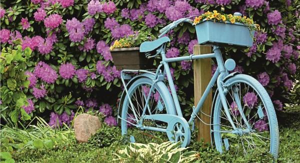 Fahrrad einmal anders