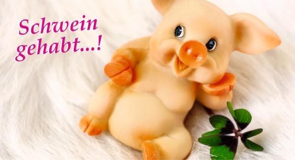 Schwein gehabt - mit Kleeblatt