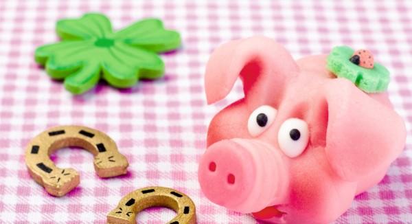 rosa Glücksschwein und Hufeisen