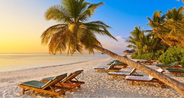 Strandliegen unter Palme