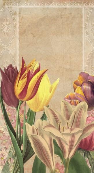 Vintage Tulpen