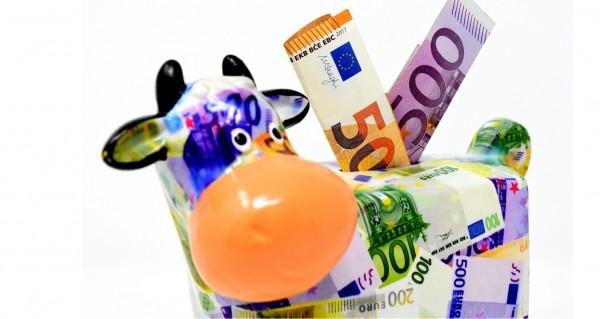 Sparkuh aus Geldscheinen