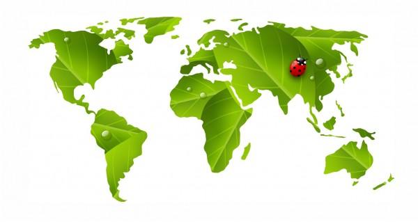 Marienkäfer auf Weltkarte