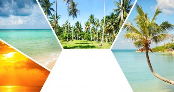 Palmen und Strandcollage
