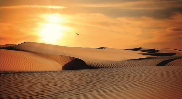 Wüstenlandschaft im Sonnenuntergang