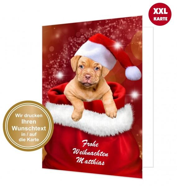 Lustige Weihnachtskarte Hund Im Weihnachtssack