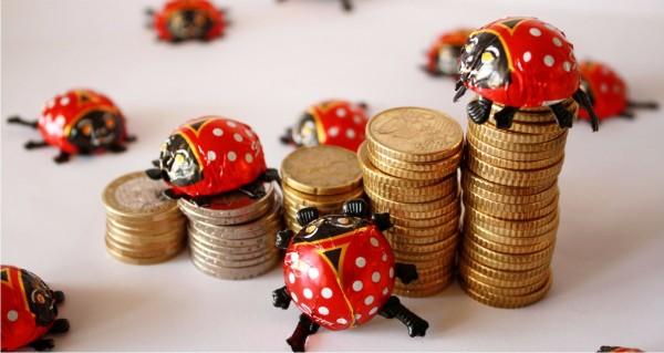 Marienkäfer und Münzen