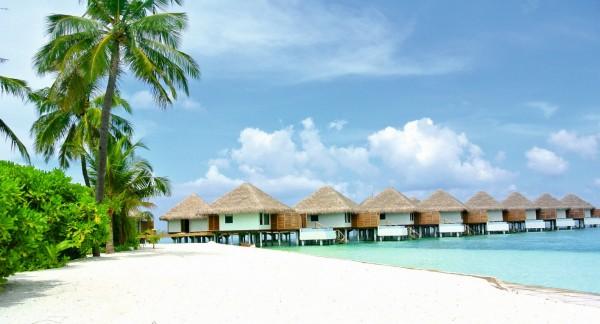 Strandhütten mit Palmen