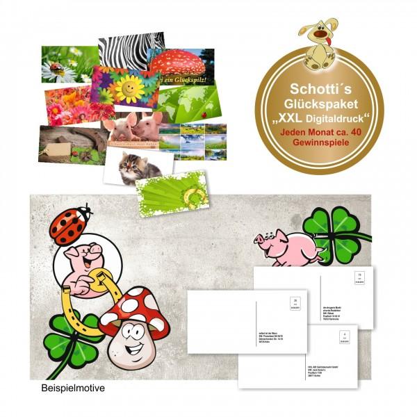 Schottis Glückspaket Xxl Postkarten