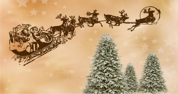 Der Weihnachtsschlitten über Tannenbäume