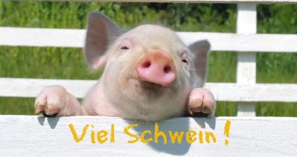 Viel Schwein