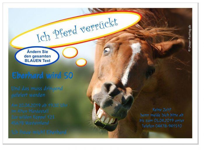 einladungen zum geburtstag mit pferd witzig für kinder